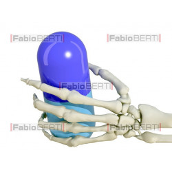Hand Skeleton with pill