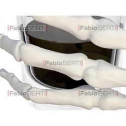 mano scheletro con bicchiere alcol
