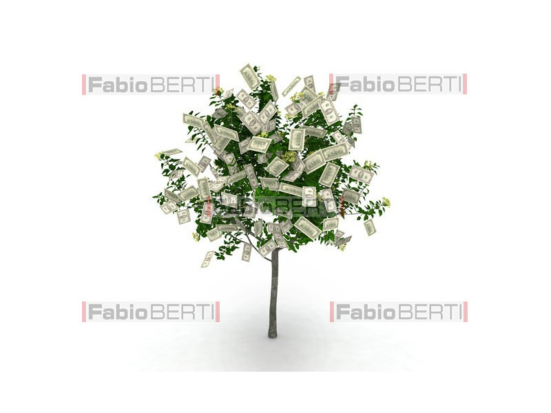 tree with dollars