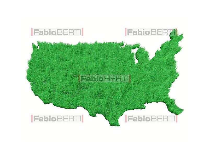 America green grass
