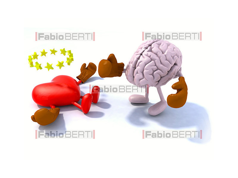 brain and heart boxing