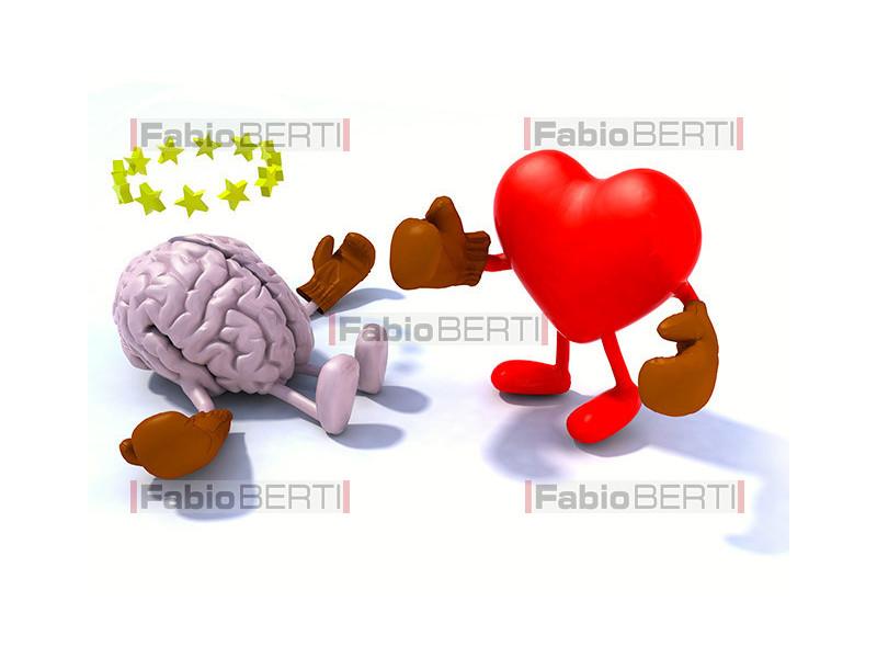 boxe cuore e cervello