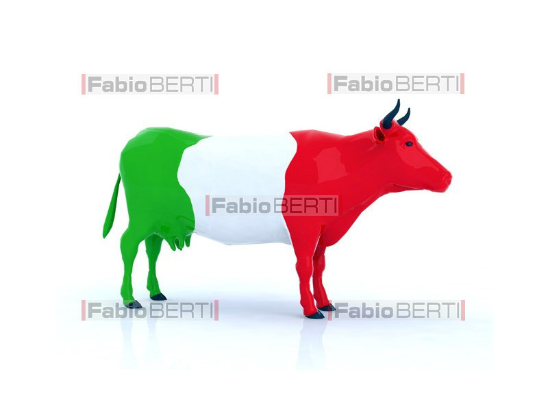 cow Italian