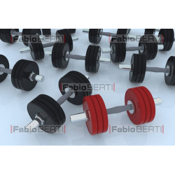 Handlebar weights gym
