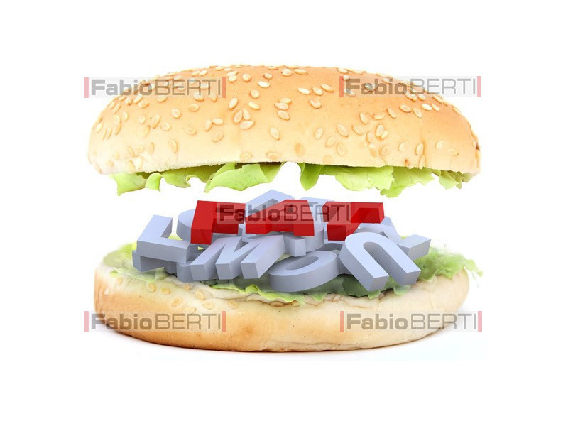 hamburger fat