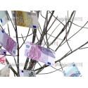 albero euro foglie