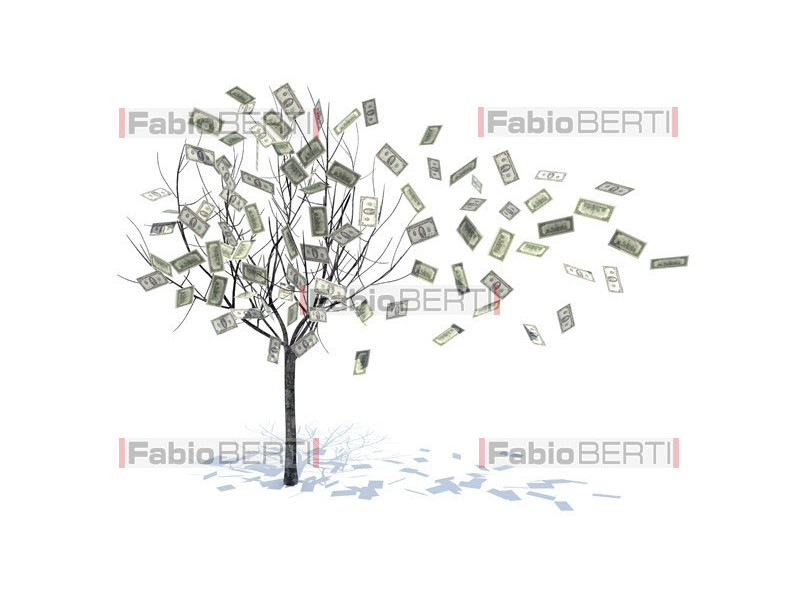 albero foglie dollaro