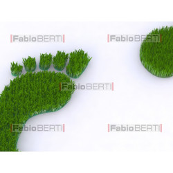 footprint on grass