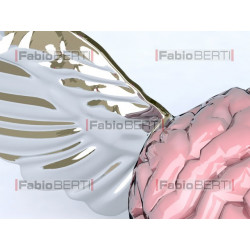 brain with wings