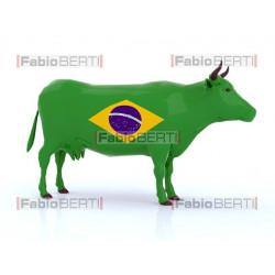 Brazilian cow