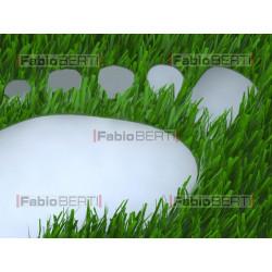 footprint on grass
