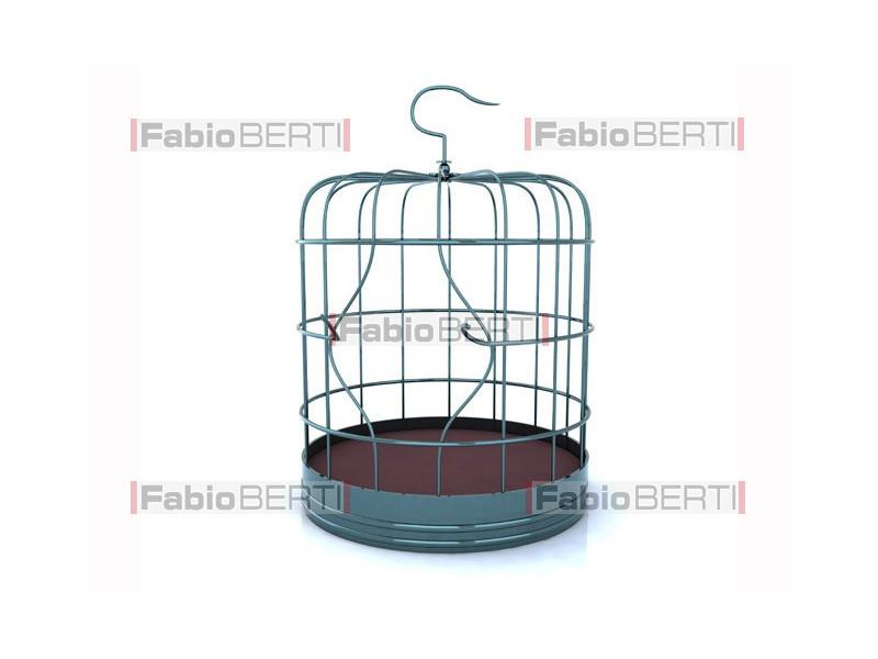 broken birdcage