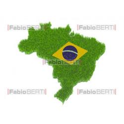 symbol brazil