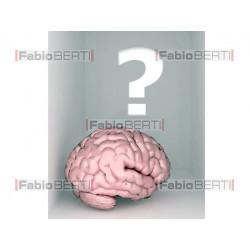 cervello dentro stanza